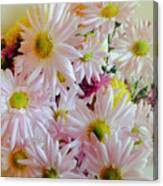 Bouquet Of Daisies Canvas Print