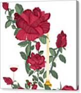 Bouquet Of Life Canvas Print