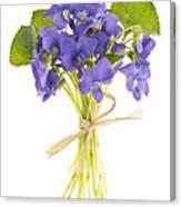 Bouquet Of Violets Canvas Print