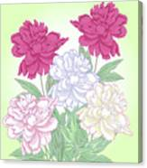 Bouquet With White And Pink Peonies.spring Canvas Print