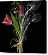 Bouquet X-ray Canvas Print