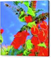 Bougainvillea Glow Canvas Print