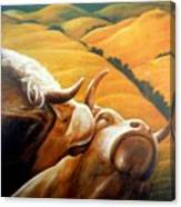 Bovine Bliss Canvas Print