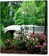 Bow Bridge In Springtime Canvas Print