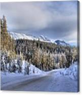 Bow Valley Parkway Winter Scenic Canvas Print
