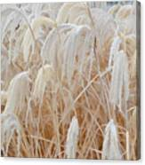 Bowing To Snow Canvas Print