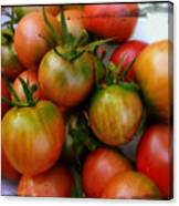Bowl Of Heirloom Tomatoes Canvas Print