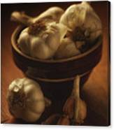 Bowl With Garlic Canvas Print