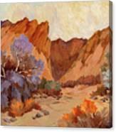 Box Canyon Canvas Print