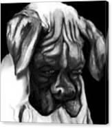 Boxer Puppy Canvas Print