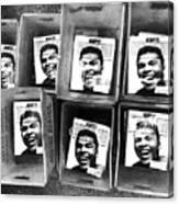 Boxers Boxes Canvas Print