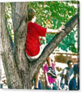 Boy In A Tree Canvas Print