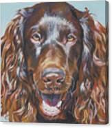 Boykin Spaniel Canvas Print