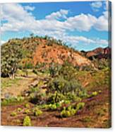 Bracchina Gorge Flinders Ranges South Australia Canvas Print