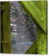 Braced With Moss Canvas Print