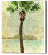 Bradenton Palm Canvas Print