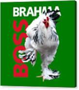 Brahma Boss T-shirt print Canvas Print