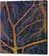 Brain Tissue Blood Supply Canvas Print