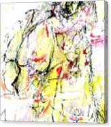 Brainwashed Believer Canvas Print