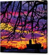 Branched Barn Canvas Print