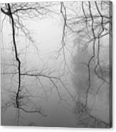 Branches In The Morning Mist Canvas Print