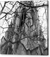 Branches Of Faith Canvas Print
