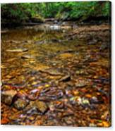 Brandywine Creek  Canvas Print