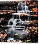 Brandywine Falls In Autumn Canvas Print