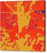 Brandywine  Maple Fall Colors 4 Canvas Print