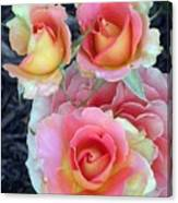 Brass Band Roses Canvas Print