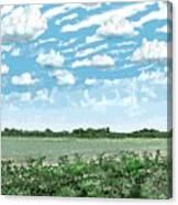 Brazoria County Field Canvas Print
