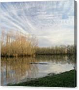 Brazos Bend White Egret Solitude Canvas Print