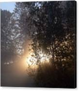Breath Of Sunshine Canvas Print