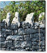 Briars And Stones New Quay Ireland County Clare Canvas Print