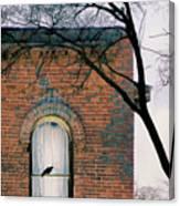 Brick Building Window With Bird Canvas Print