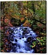 Bridal Veil Creek Canvas Print