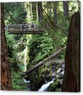 Bridge At Sol Duc Fall #1 Canvas Print