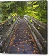 Bridge In A Park Canvas Print