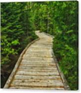 Bridge To Chimney Pond Canvas Print