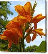 Bright Bloom Canvas Print