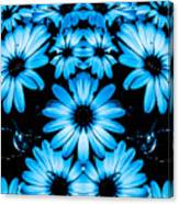 Bright Blue Daisies Canvas Print