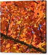Bright Colorful Autumn Tree Leaves Art Prints Baslee Troutman Canvas Print
