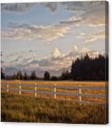 Bright Evening Light Canvas Print