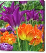 Bright Floral Canvas Print
