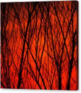 Bright Red Sunset Canvas Print