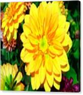 Bright Yellow Dahlia Flower Canvas Print