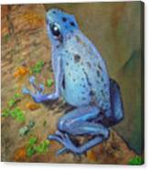 Brilliant Blue Poison Dart Frog Canvas Print