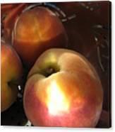 Brilliant Peach Canvas Print