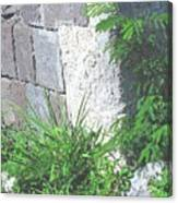 Brimstone Wall Canvas Print