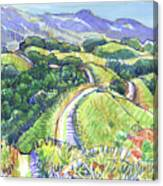Briones Crest In May, Lafayette, Ca Canvas Print